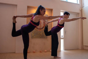 Yoga-opleiding, Meridiaanyoga