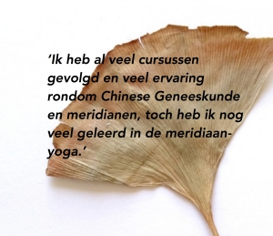 Quote Essentie van Yoga