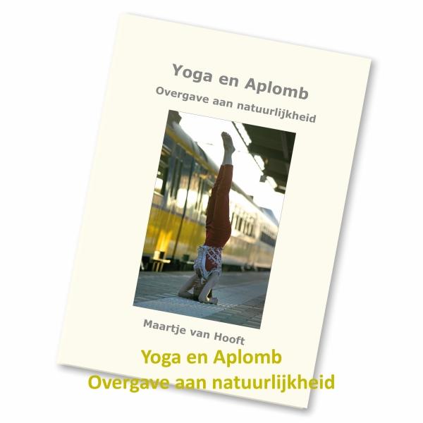Essentie-van-yoga